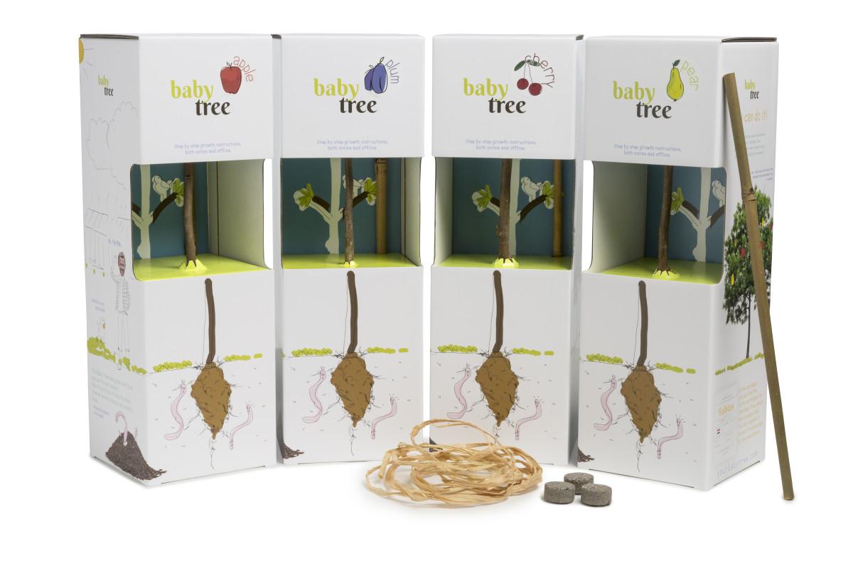 Reklamní sazenice ovocných stromků