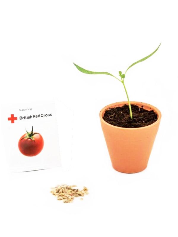 Balení reklamních semínek