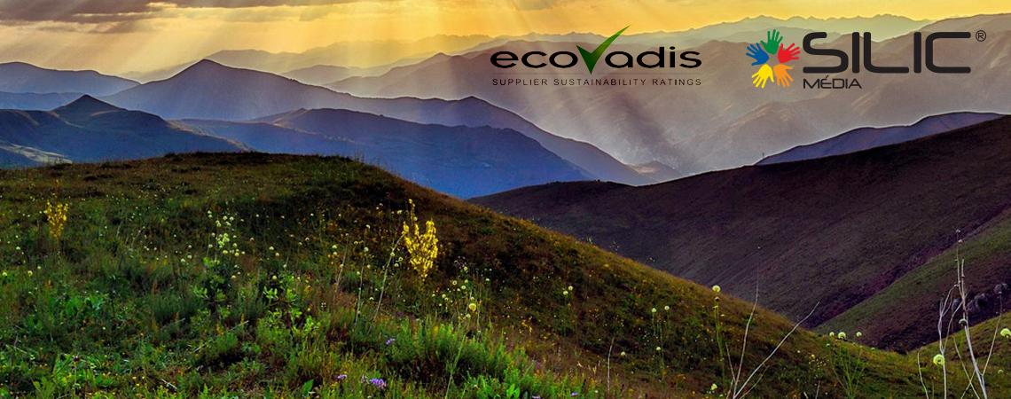 Pozadí EcoVadis 2018 stříbrné ocenění