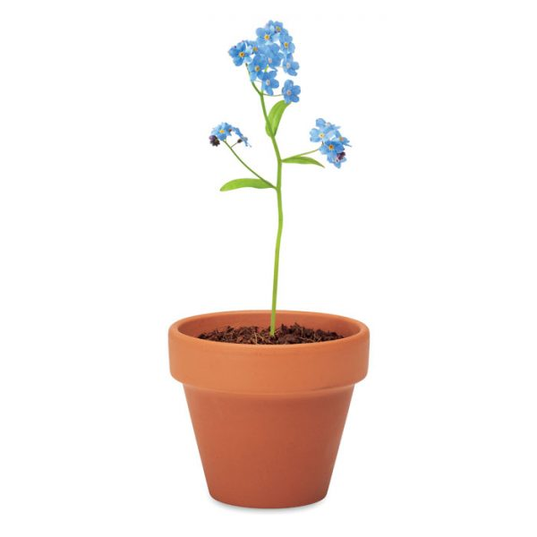 Terakotový květináč - pomněnka FORGET ME NOT