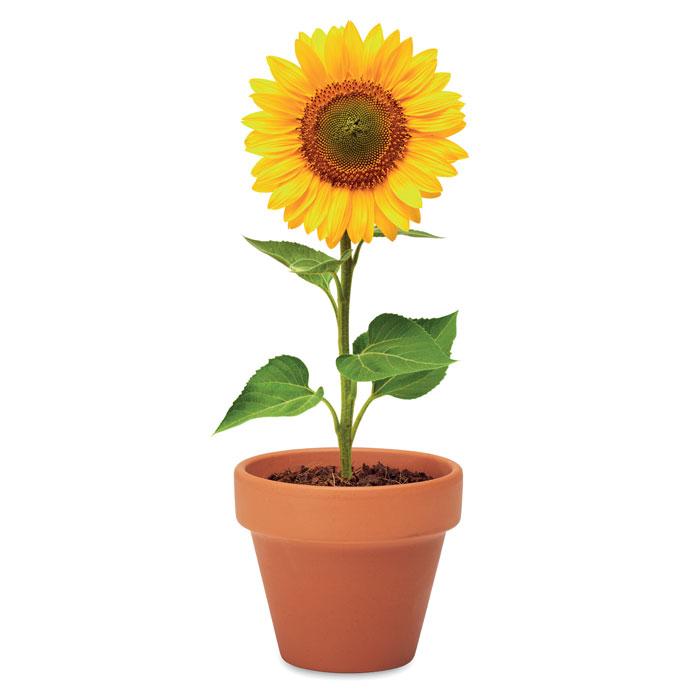 Terakotový květináč - slunečnice SUNFLOWER