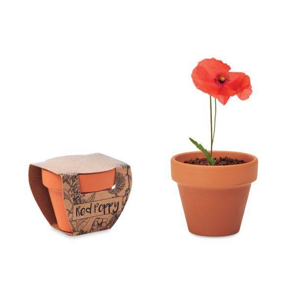 Terakotový květináč - mák RED POPPY