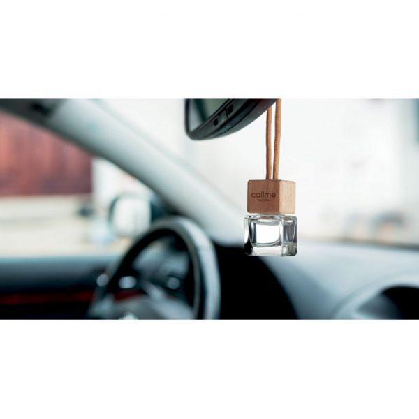 Osvěžovač vzduchu do auta FRESH AIR