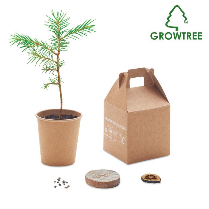 Vypěstuj si borovici GROWTREE™
